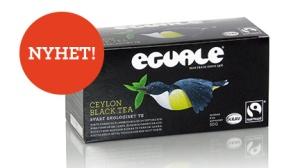 Eguale-se_Slide_Ceylon